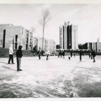 Ice skaters on Lake Anne